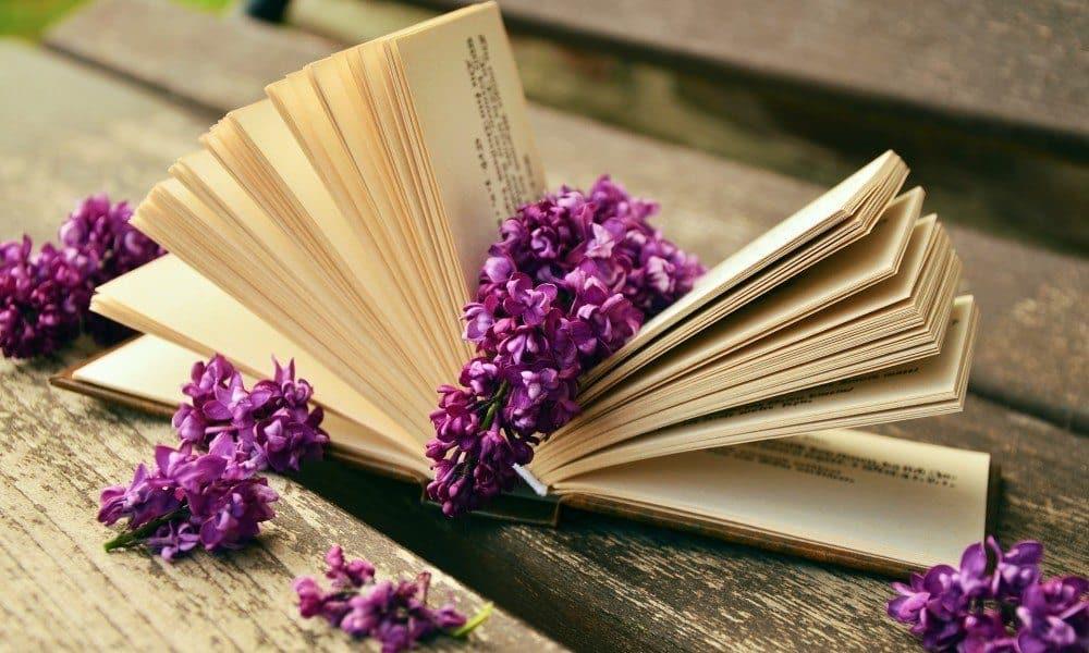 bucuria de a citi