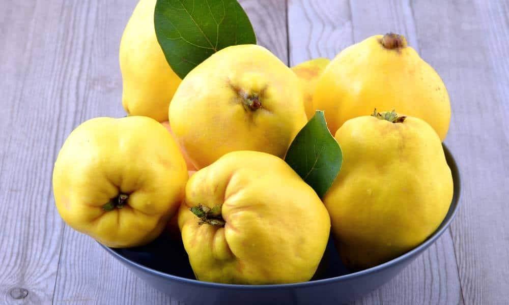 Gutuia – fructul minune al toamnei