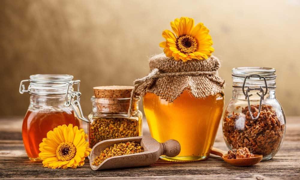 Mierea de albine si beneficiile ei pentru organism