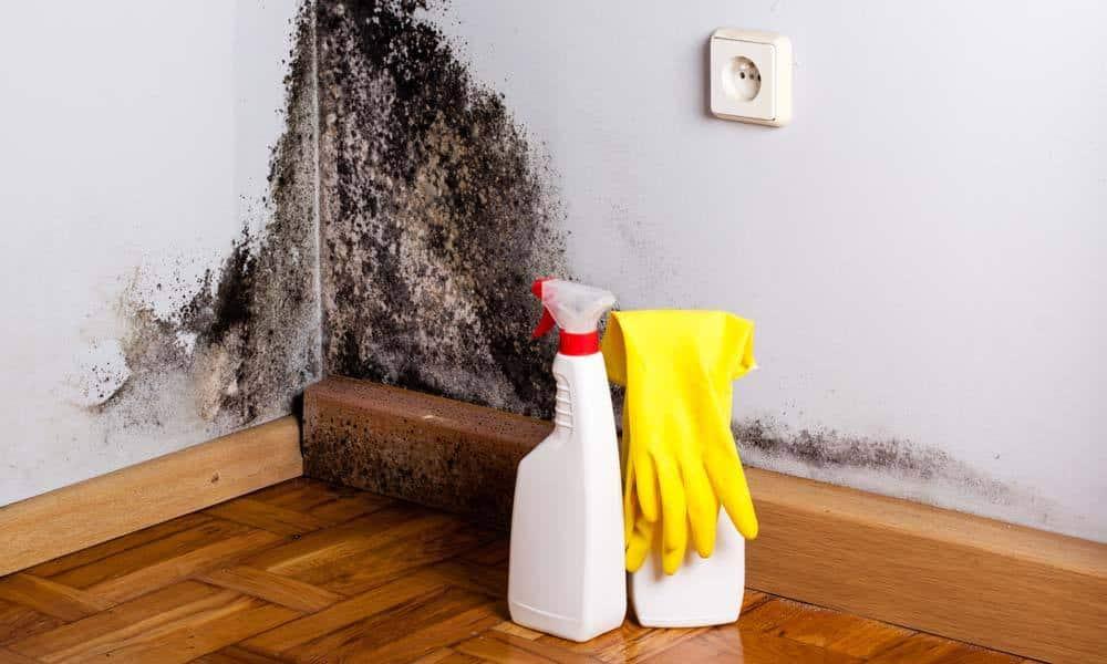 Metode de a scapa de umezeala si mucegaiul din casa